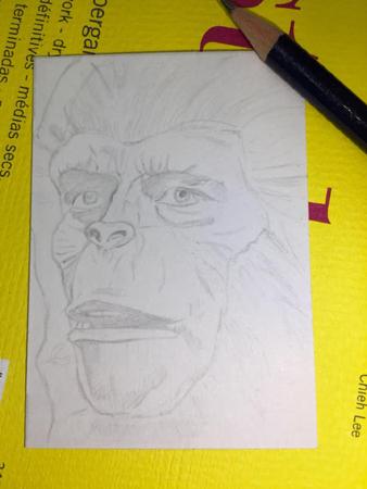 Ape pencils