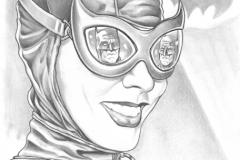 Gotham Public Works Catwoman